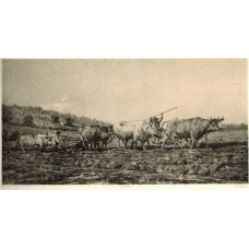 'Labourage Nivernais'  Two teams of oxen ploughing by  Auguste  Anastasi [1820-1889].