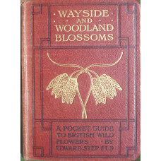 Wayside and Woodland Trees A Pocket Guide to the British Sylva.