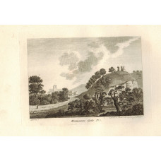 'Montgomery Castle' , 2 plates, by S. Sparrow.