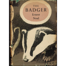 The Badger. M1.