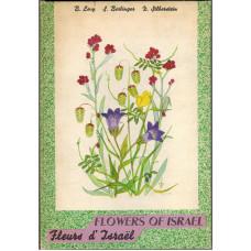Flowers of Israel. Fleurs d'Israel.